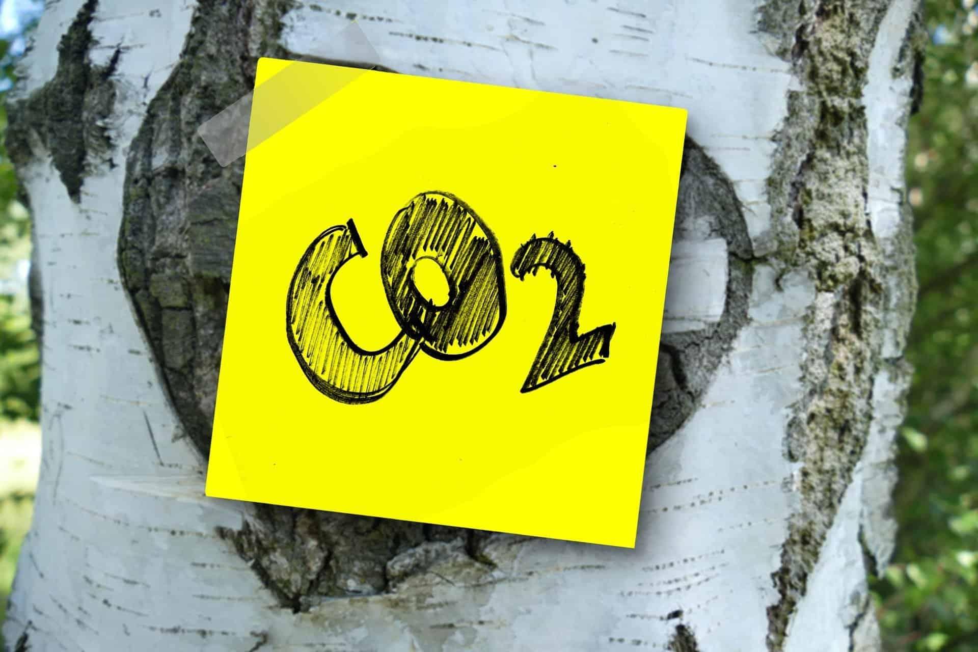 Zero Carbon - Climate Change Adaptation